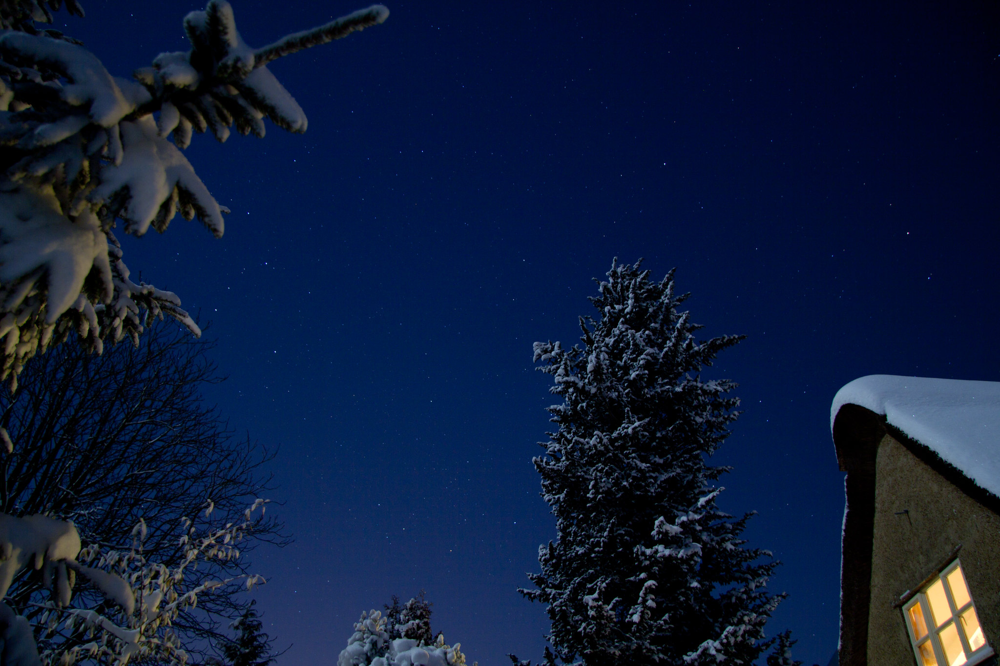 A night sky, with snow-covered evergreen trees and roof gable visible on the edges
