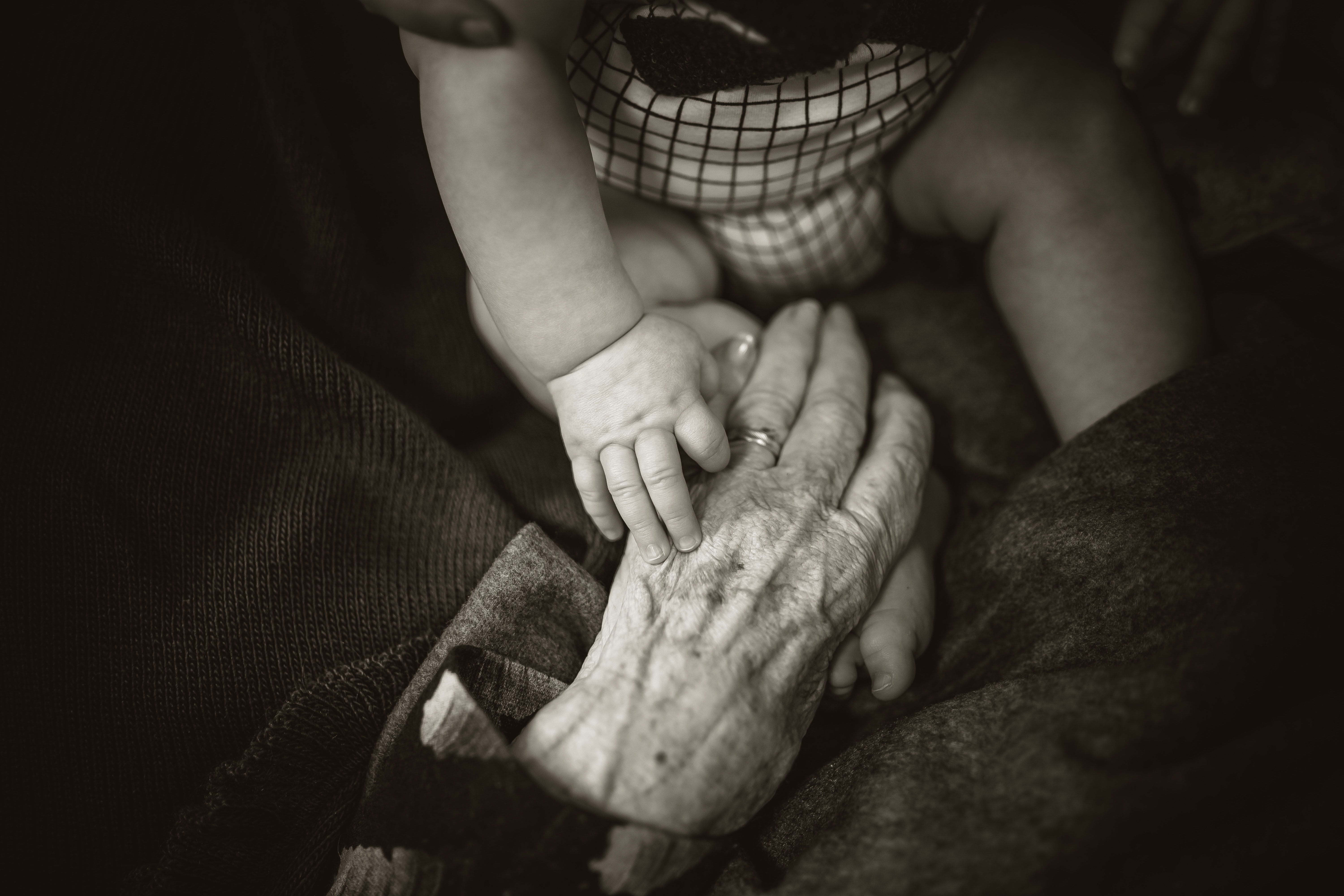 A black-and-white photo of an infant, whose hand is holding the gnarled hand of his great-grandmother.