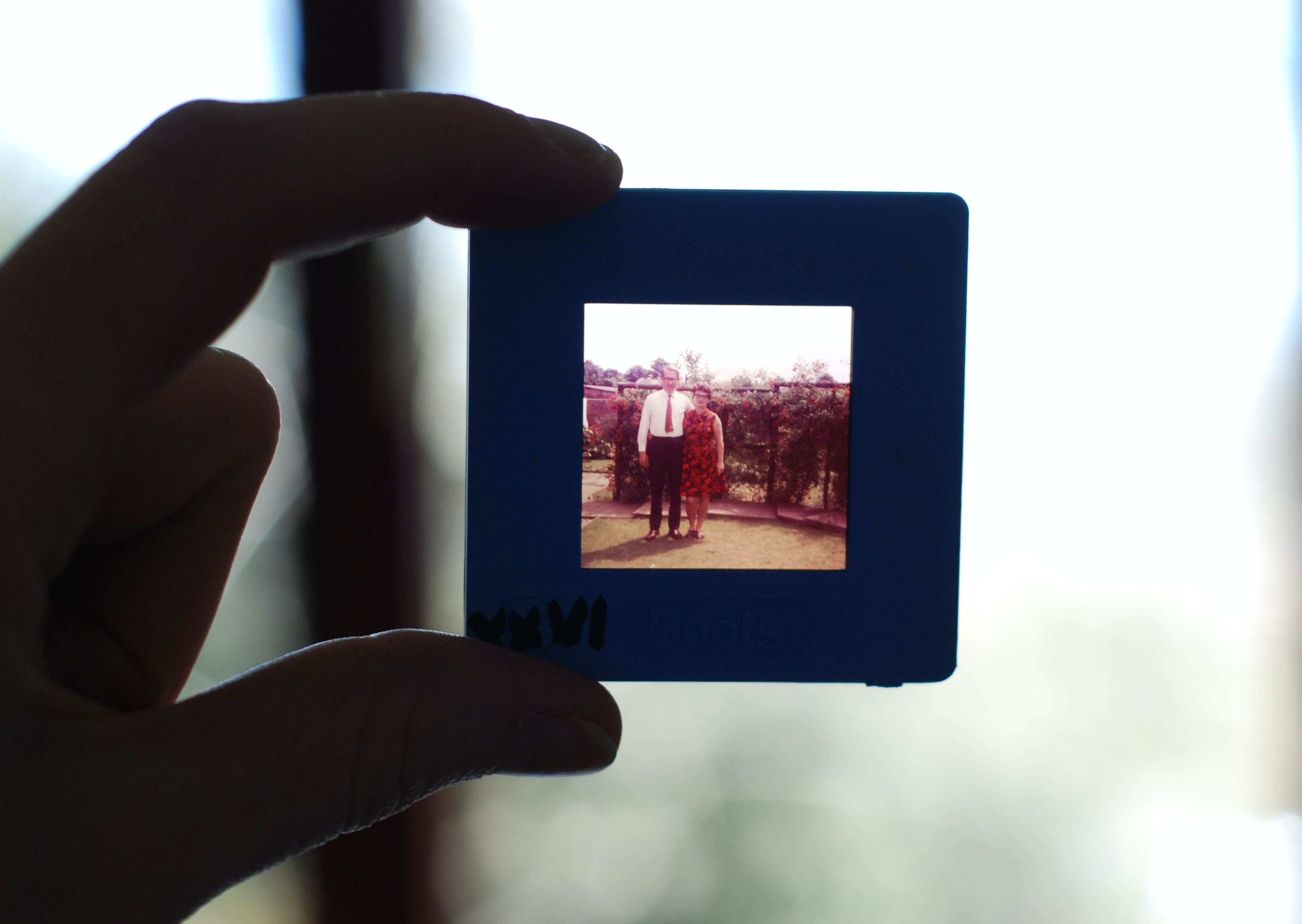 A hand holds a slide up to the light, on which is a dated image of a woman and man posing outside.