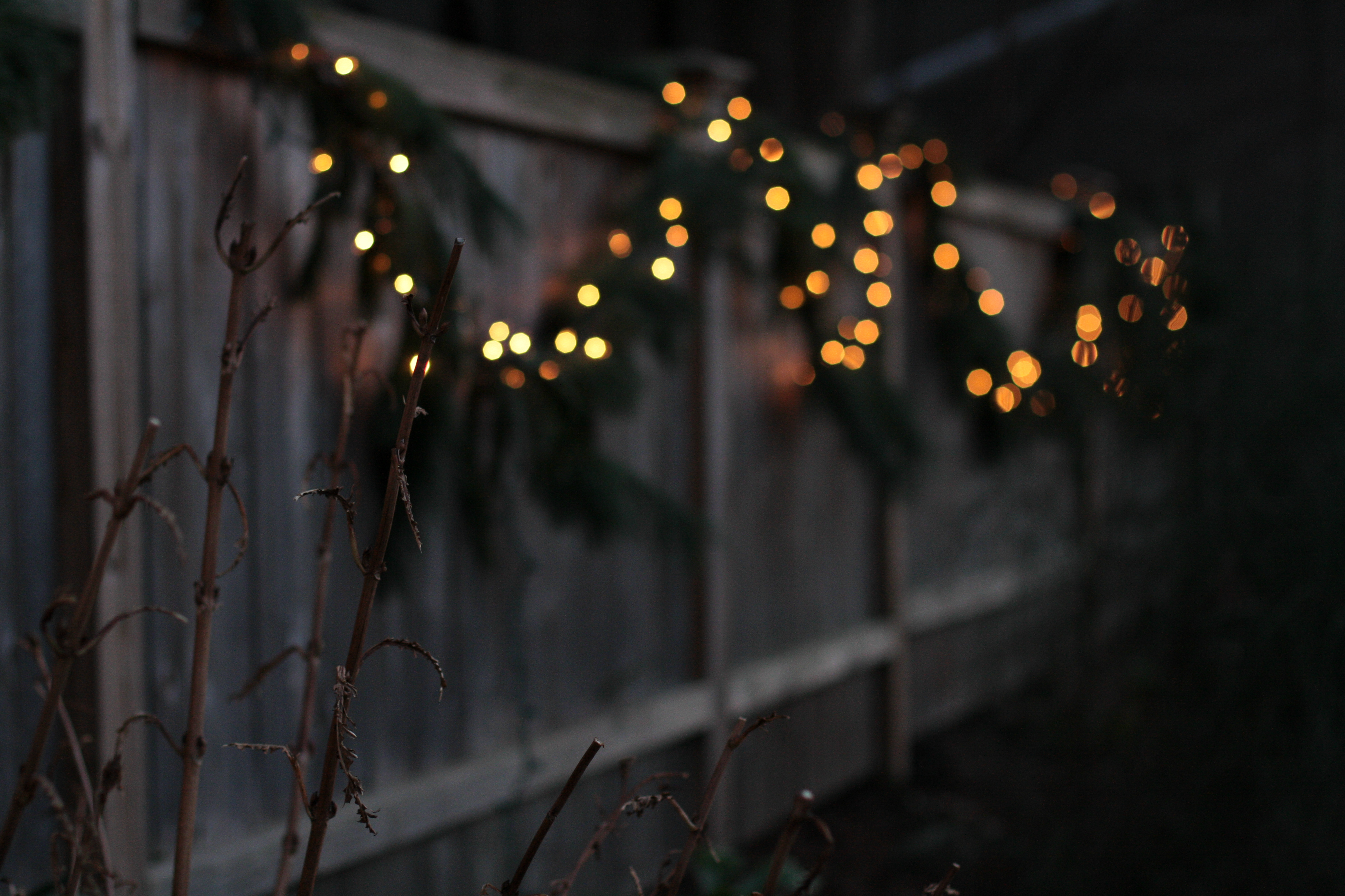 In the dark, swoops of evergreen garland with small white lights decorate an outdoor fence.