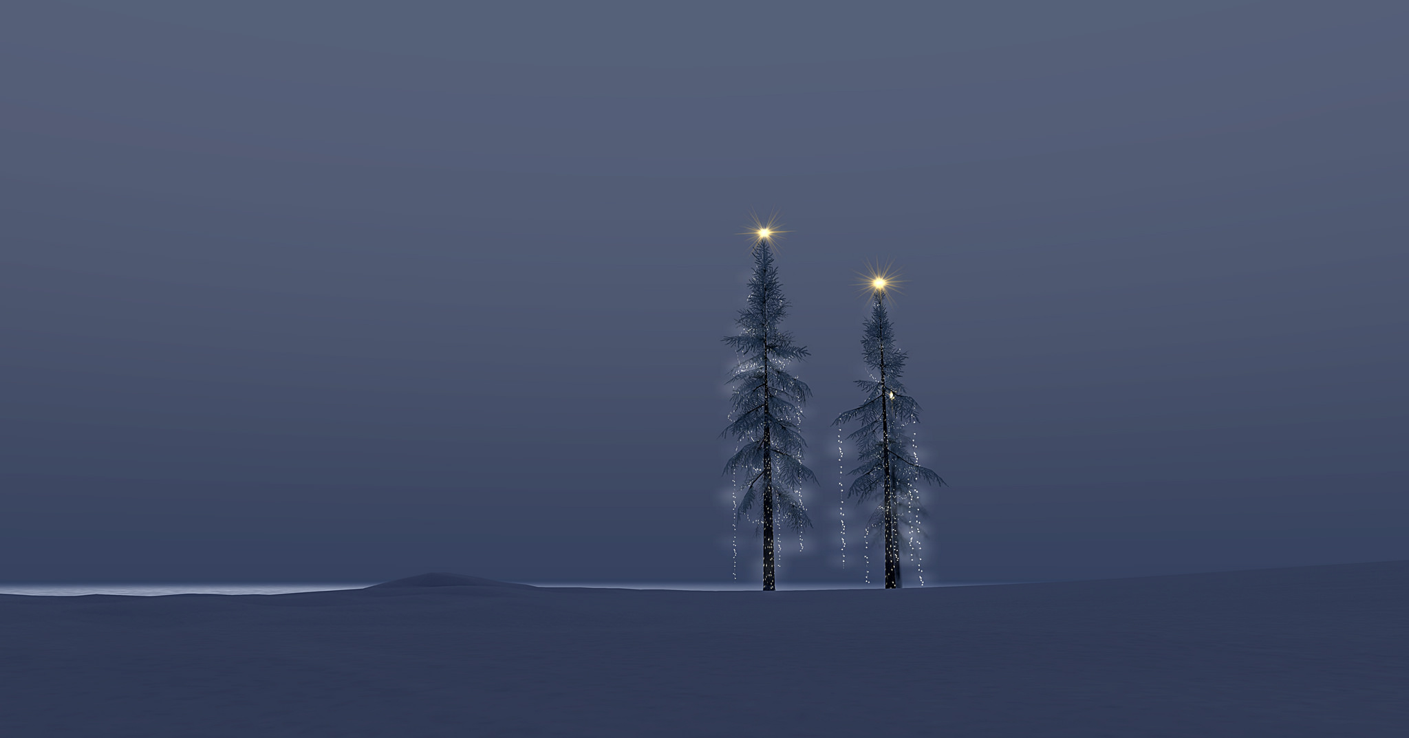 Against a stark grey sky, two tall evergreens are decked with simple white lights