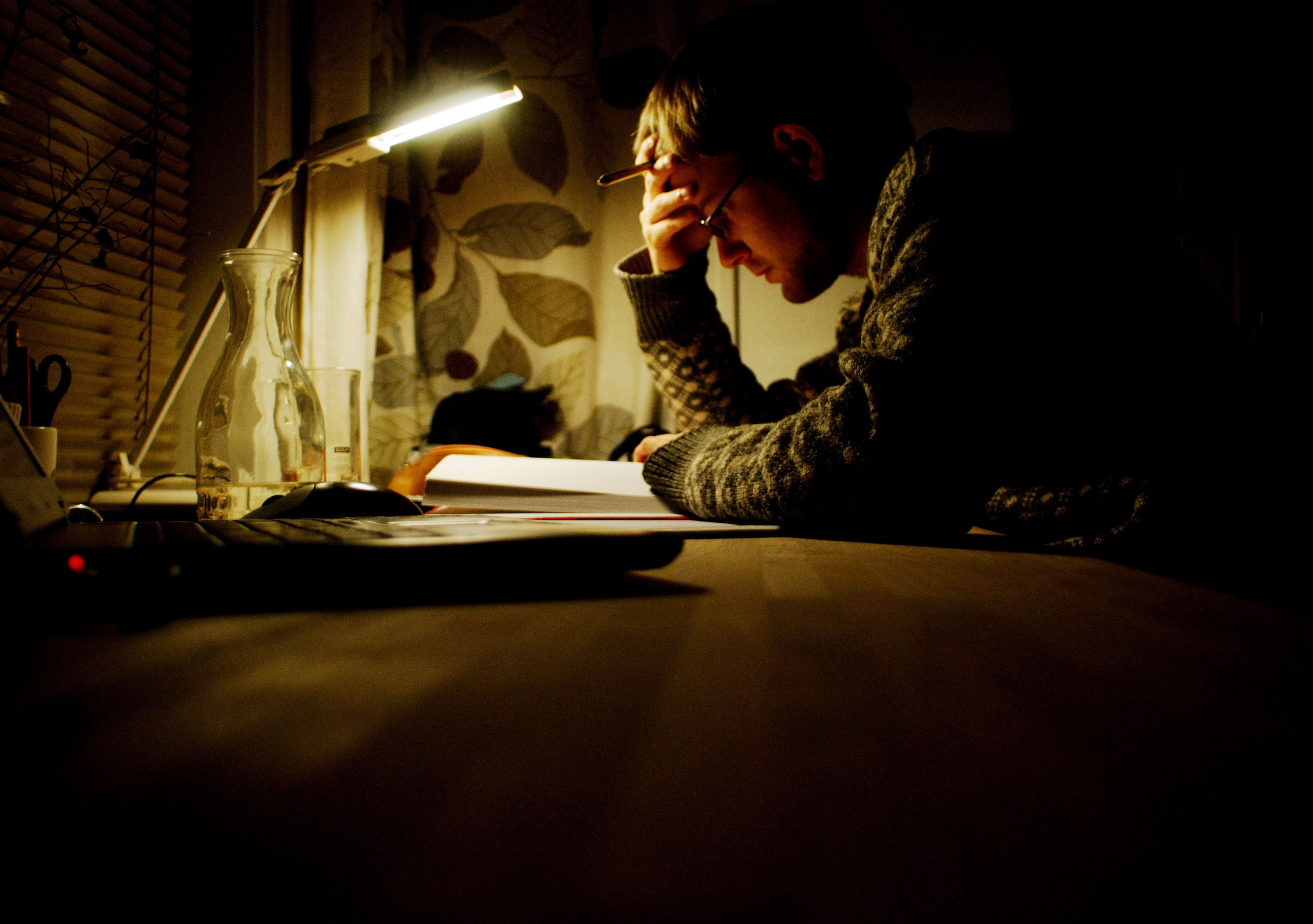 A young man studies at his desk