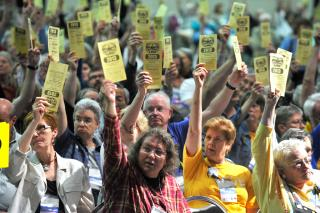Delegates hold their yellow voting cards aloft.