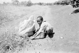 Leader Resource 4 Child Labor Photographs