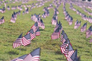 A lawn marked by tidy rows of small American flags, suggesting a memorial to fallen soldiers