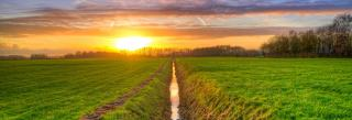 Farm irrigation ditch with sunset in background.