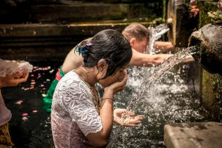 People praying in the Tirta Empul temple (Bali, Indonesia), submerged to the waist in water and bowing before fountains that are pouring out water.