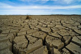 "A field in Mongolia of dirt, deeply cut by cracks. The phenomenon, called a ""dzud,"" is a drought in the summer and an extremely cold winter."