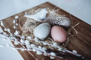 On a wooden board, an arrangement of pastel eggs, a ceramic bird, a nest with feathers, and some pussywillow.