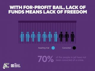 Graphic of statistics related to for-profit bail