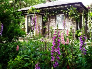 purple and pink stalks of foxglove in a garden, with a stone house in the background