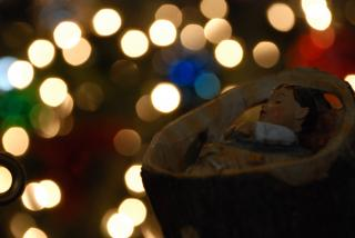 With blurred multicolored Christmas lights in the background, a small Jesus-in-the-manger from a nativity scene is in half-light.