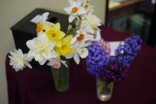 Vases of daffodils and hyacinth on altar.