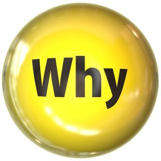 "The word ""why"" in a yellow bubble"