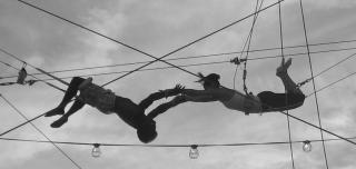 "Two trapeze artists meet, mid-swing, for ""the catch"""