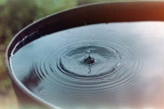 A drop of water bounces off of a vessel of still water, sending out small ripples.
