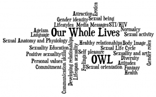 word collage of topics covered in Our Whole Lives, adult