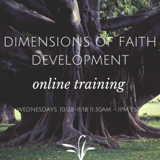 Dimensions of Faith Development Online Training 10/28 - 11/18 11:30am - 1pm EST