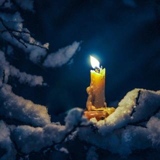 image of a burning candle near a snowy tree branch