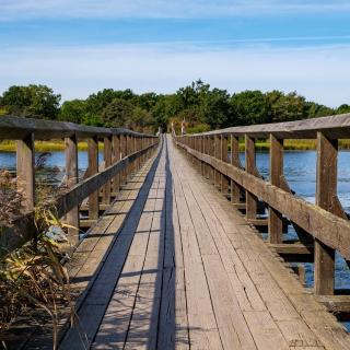 Photo of wooden bridge over blue water