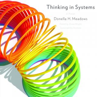 Cover of book Thinking in Systems, with a rainbow slinky