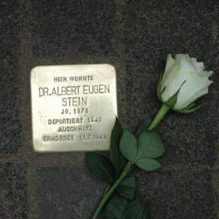 A white rose lays on the street next to a commemorative plaque, or Stolperstein, in Weisbaden Germany that honors a victim of the Holocaust.