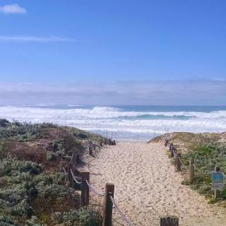 Path to the beach at Asilomar Park in Pacific Grove, CA