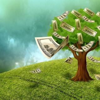 Illustration with a tree of 100 dollar bills