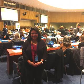 Emma Langsner, UU-UNO Program Intern, at CTAUN Conference at the United Nations
