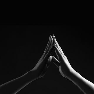 A person's hands and lower arms: the hands touch at the fingertips, palms separated, pointed upwards as if in prayer.