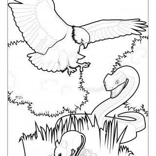 Line drawing of a bird, a snake, and a mouse in a marsh habitat
