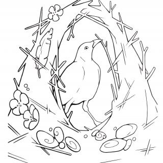 Line drawing of a bird inside of nest of grasses and flowers that it has made
