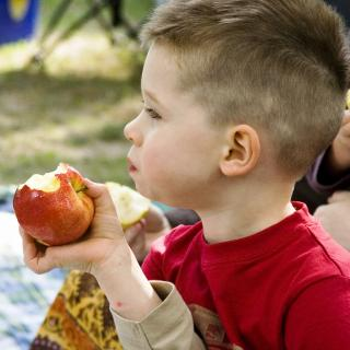 A young child holding and eating an apple