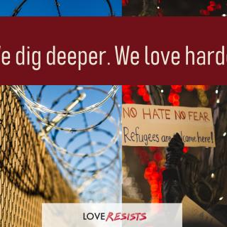 Image of barbed wire fence and sign that says No hate, no fear. Love Resists logo.