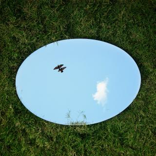 An oval mirror, lying on grass, reflects the blue sky and two birds flying