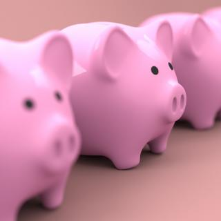 Row of pink piggy banks