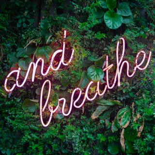 "Neon light saying ""and breathe"" on a wall of green plants"