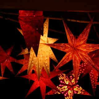 "a ""forest"" of red and orange paper star lanterns in the dark"