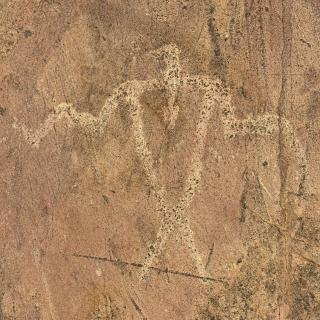 A thunderbird design carved into a rock at Jeffers Petroglyphs, near Sanborn MN