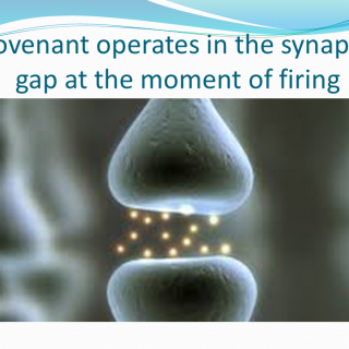 "Image of synapses firing with text ""Covenant Operates in the Synaptic Gap at the Moment of Firing"""