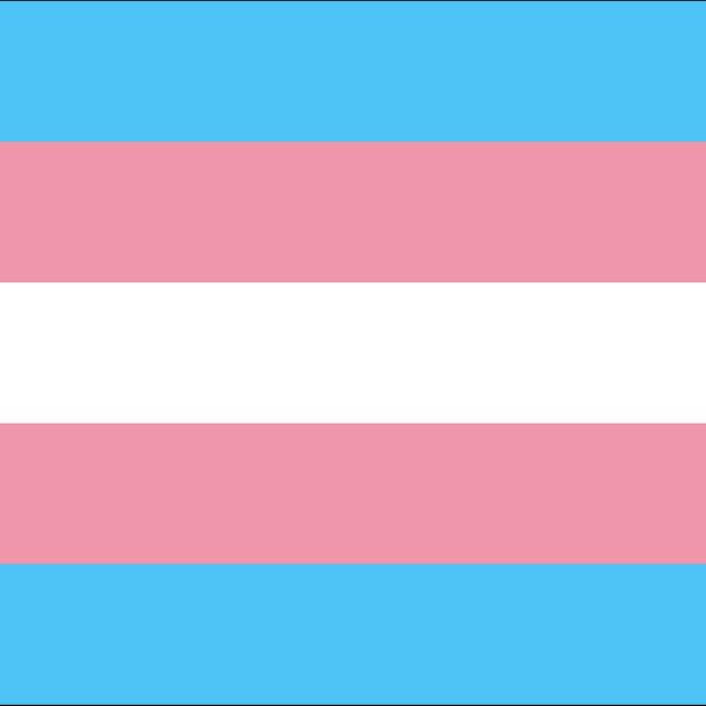 Transgender Pride flag, stripes of blue, pink and white.
